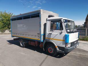 IVECO ZETA 50.9 Trasporto Animali Vivi kamion za prijevoz stoke