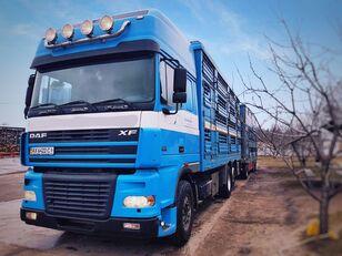 PEZZAIOLI kamion za prijevoz stoke + prikolica za prijevoz stoke
