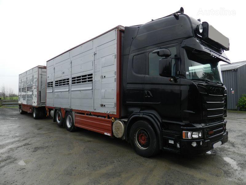 SCANIA R560 V8  kamion za prijevoz stoke + prikolica za prijevoz stoke